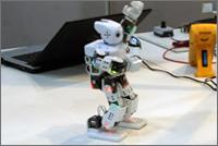 Robotiker/in