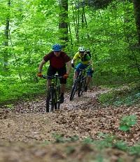 Mountainbike-Wege