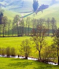 Gewässer in Landwirtschaftsfläche