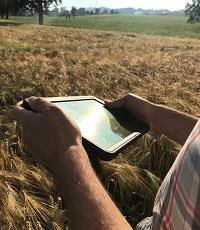 Landwirt mit Tablet im Feld.